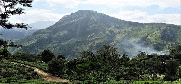 Traveling forever starts in... Sri Lanka!